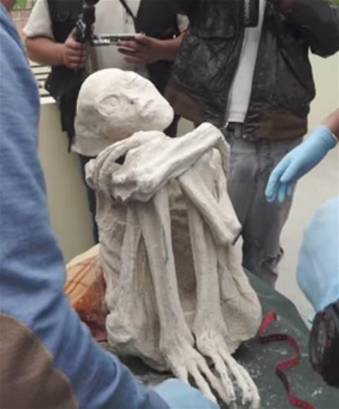 VIDEO OF MORE ALIEN MUMMIES FROM PERU